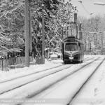 Der erste Schnee im Winter 2010