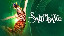 Cirque du Soleil Programm