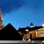 Weihnachtsbaum am Hauptplatz