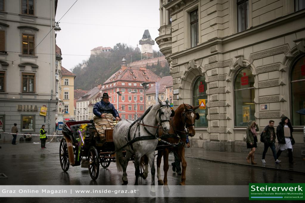 Kutsche Pferde Faschingsumzug Graz