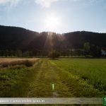 Areal Alt-Grottenhof: Hunde an die Leine!