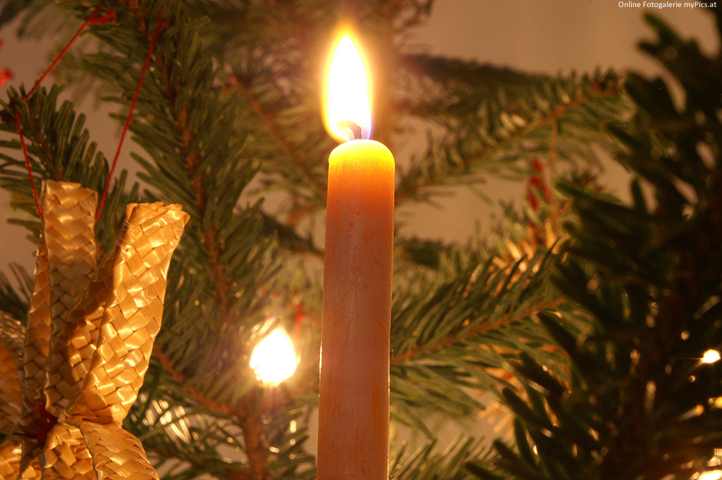 Peter Rosegger zum weihnachtsbaum