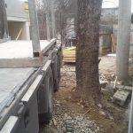 Fünf Bäume in der Schubertstraße bei Bauarbeiten für Wohnsiedlung schwer beschädigt