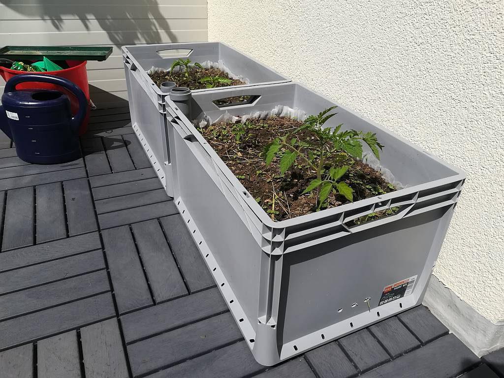 Wasserspeicher Pflanzenkübel selber bauen