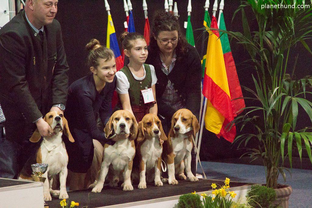 IHA Graz Beagle