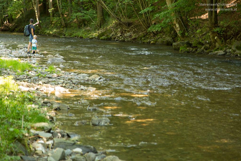Wandern am Wasser Familienausflug