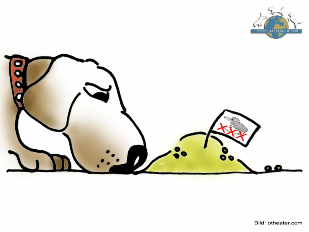 Giftköder Hund