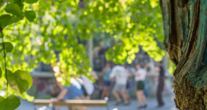 Schutzzone Graz Stadtpark